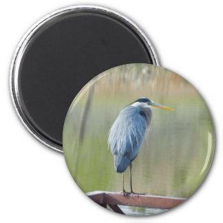 heron magnet