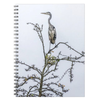 Heron on a tree notebook