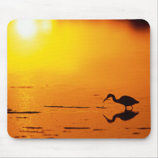 Heron silhouette at sunset, Florida Mouse Pad