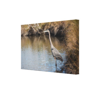 Heron Wall Canvas