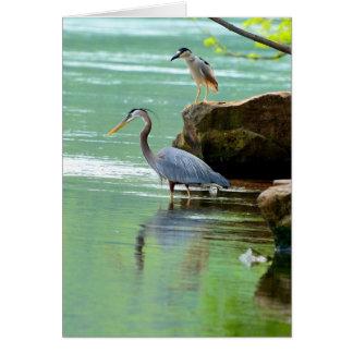Herons Card