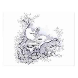 Herons Postcard