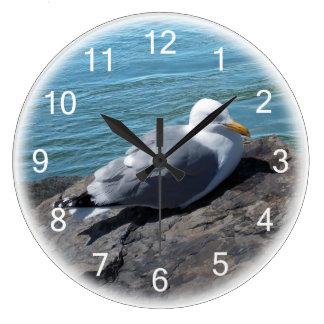 Herring Gull on Rock Jetty Clocks