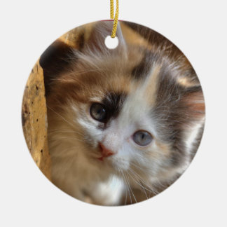 Heterochromia Calico Kitten Ceramic Ornament