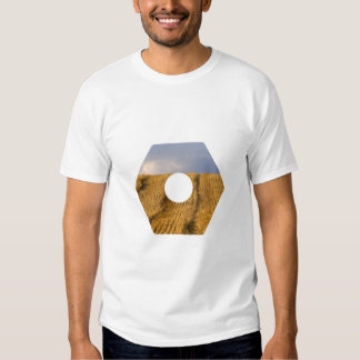 Hex Wheat T Shirt