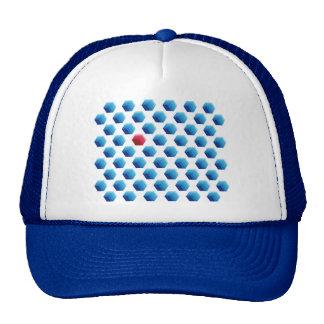 Hexagonal Forms hat