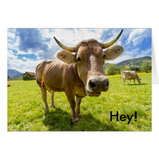 Hey! Call Me Soon Card with cute Funny Cow