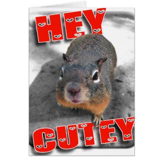 Hey cutey funny squirrel card