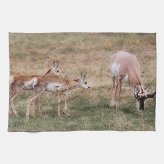 Hey Dad Wildlife Kitchen Towel