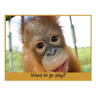 Hey I m a Cute Primate Postcards