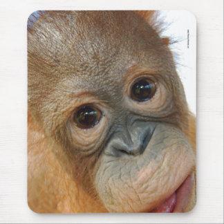 Hey, I'm a Cute Orangutan photo Mouse Pad
