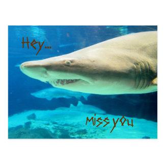 Hey...Miss you Postcard