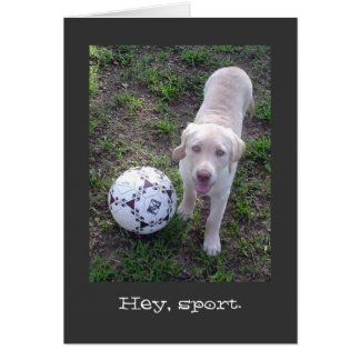 Hey, Sport. Yellow Lab Puppy Father's Day Greeting Card