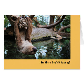 Hey there (Sloth). Card