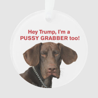 Hey Trump, I'm a Pussy grabber too!