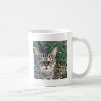 """Hey You"" says this cat Coffee Mug"