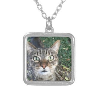 """""""Hey You"""" says this cat Silver Plated Necklace"""