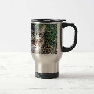 """Hey You"" says this cat Travel Mug"