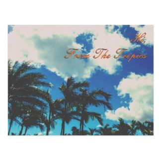 Hi From The Tropics Postcard