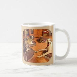 """Hi from Zeke, Zeus, Owen, and Bubba"" coffee mug"