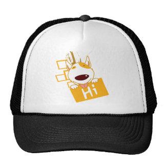 hi mesh hats