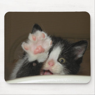 """Hi!"" kitten mouse pad"
