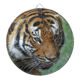 Hi-Res Malay Tiger Close-up Dartboard