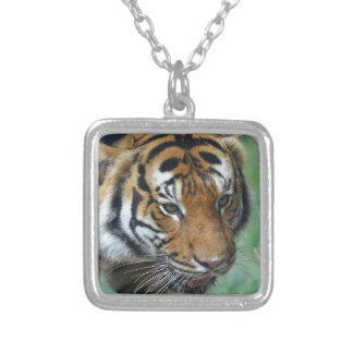 Hi-Res Malay Tiger Close-up Silver Plated Necklace