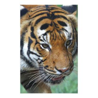 Hi-Res Malay Tiger Close-up Stationery