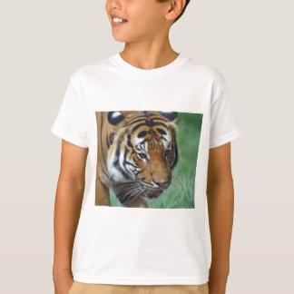 Hi-Res Malay Tiger Close-up T-Shirt