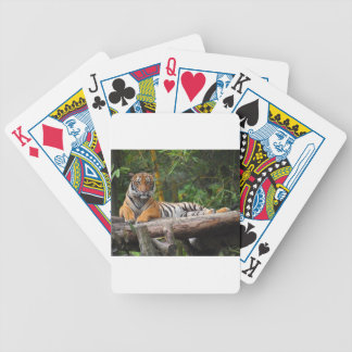 Hi-Res Malay Tiger Lounging on Log Bicycle Playing Cards