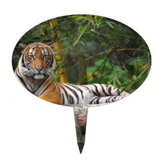 Hi-Res Malay Tiger Lounging on Log Cake Picks