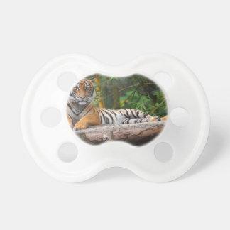 Hi-Res Malay Tiger Lounging on Log Dummy