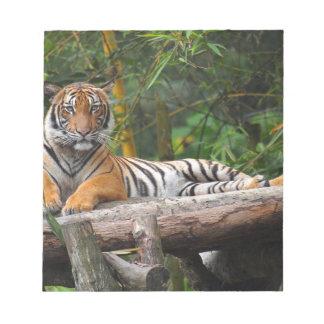 Hi-Res Malay Tiger Lounging on Log Notepad