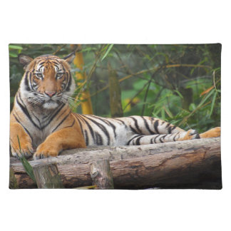 Hi-Res Malay Tiger Lounging on Log Placemat
