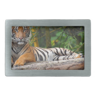 Hi-Res Malay Tiger Lounging on Log Rectangular Belt Buckle