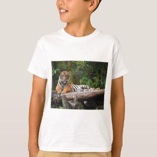 Hi-Res Malay Tiger Lounging on Log T-Shirt