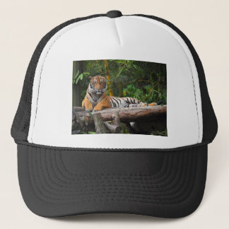 Hi-Res Malay Tiger Lounging on Log Trucker Hat