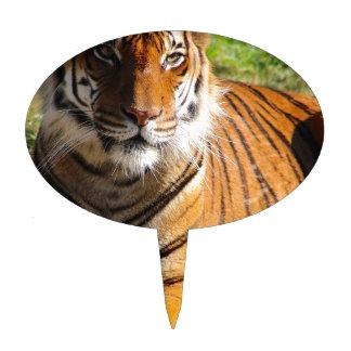 Hi-Res Malayan Tiger Cake Toppers