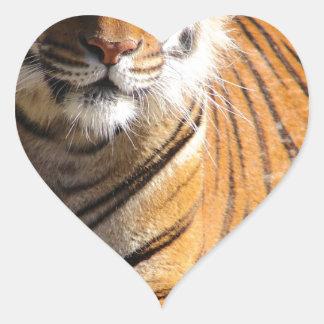 Hi-Res Malayan Tiger Heart Sticker