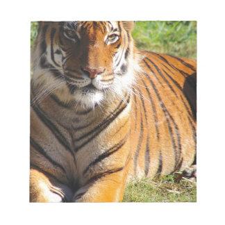 Hi-Res Malayan Tiger Notepad