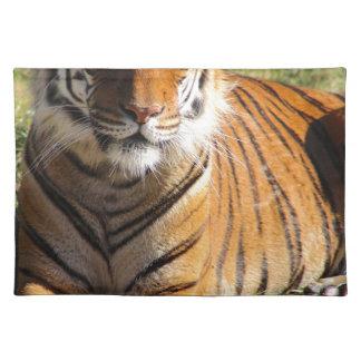 Hi-Res Malayan Tiger Placemat