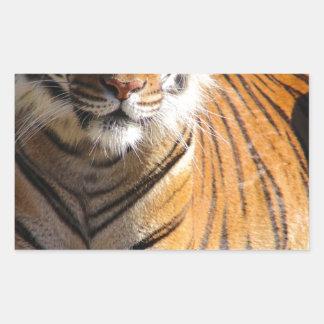 Hi-Res Malayan Tiger Rectangular Sticker