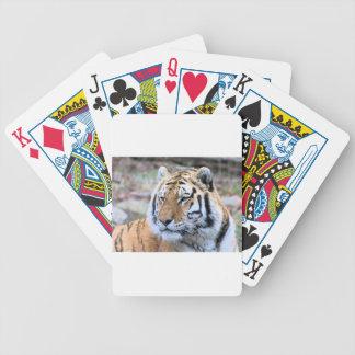 Hi-Res Stoic Royal Bengal Tiger Bicycle Playing Cards
