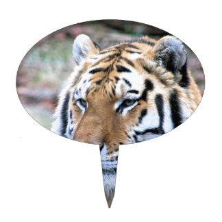 Hi-Res Stoic Royal Bengal Tiger Cake Toppers