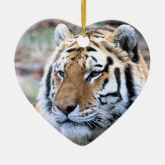 Hi-Res Stoic Royal Bengal Tiger Ceramic Ornament