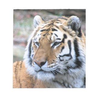 Hi-Res Stoic Royal Bengal Tiger Notepad