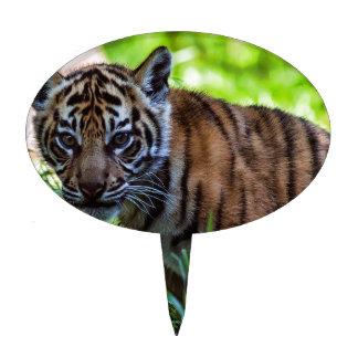 Hi-Res Sumatran Tiger Cub Cake Toppers