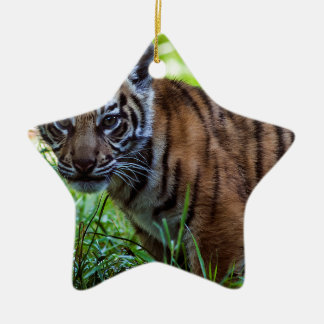 Hi-Res Sumatran Tiger Cub Ceramic Ornament