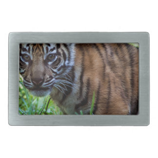 Hi-Res Sumatran Tiger Cub Rectangular Belt Buckles